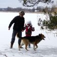 honden in de winter